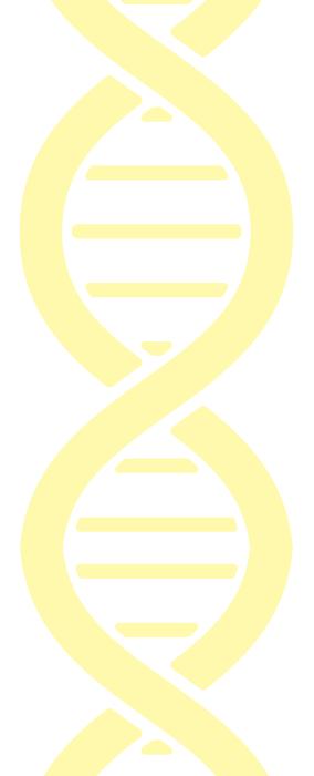 illustration ADN