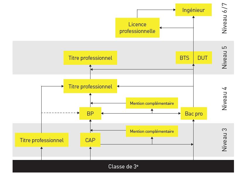 schéma des filières de formations